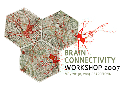 Brain Connectivity Workshop 2007